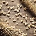 Quali sono i sintomi dell'intolleranza al glutine? Come si diagnostica e come si cura? Quali sono gli alimenti da evitare. Ecco la risposta a tutte queste domande.