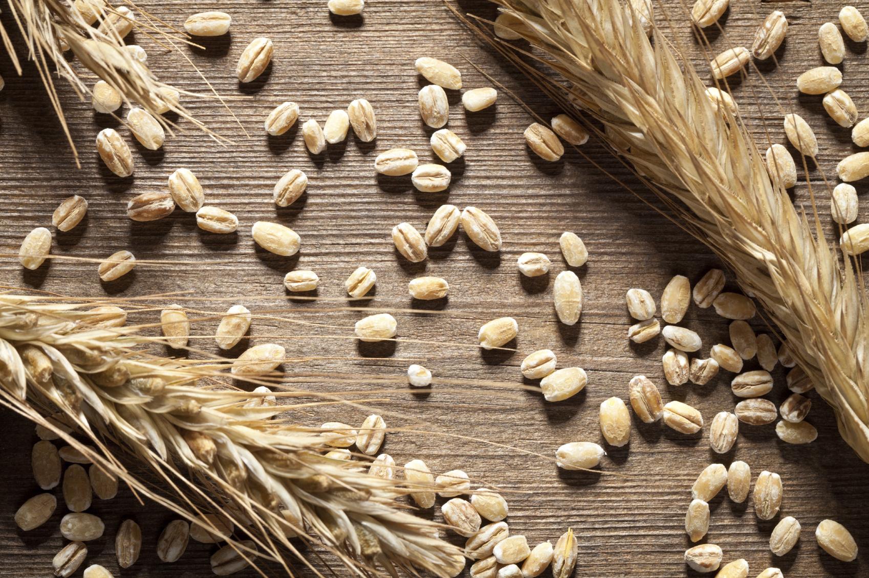 Glutine: curare l'intolleranza con l'alimentazione